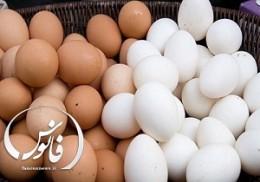 جمع آوری تخم مرغهای بدون کد بهداشتی